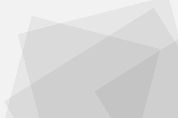 WEBデザインの職業訓練の人種について